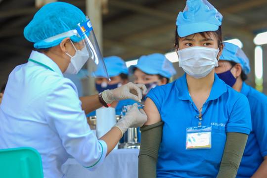 Dự kiến tiếp nhận 54 triệu liều vắc xin Covid-19