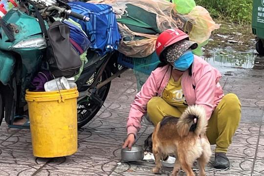 Có cần thiết phải tiêu huỷ đàn chó?